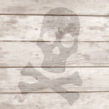 Skull wooden Stock Images