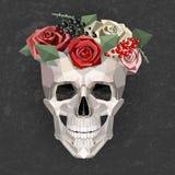 Skull with wreath Stock Photo