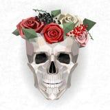 Skull with wreath Royalty Free Stock Photos