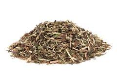 Skullcap Herb. Used in natural alternative medicine over white background. Scutellaria Stock Image