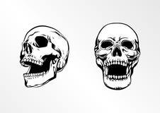 Skullhead双传染媒介艺术例证 免版税库存照片