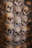 Skulls Royalty Free Stock Photos