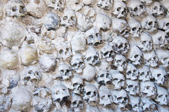 Skulls background Royalty Free Stock Photo