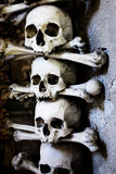 Skulls and bones Royalty Free Stock Photography