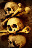 Skulls and bones. Close up sepia toned Royalty Free Stock Photography