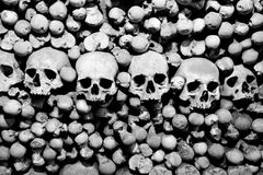 Skulls and bones. Black and white image Royalty Free Stock Photos