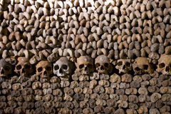Skulls and Bones. Scary Skulls and Bones in the Catacombs of Paris royalty free stock photography