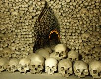 Skulls and Bones royalty free stock photography