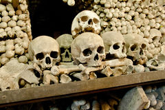 Skulls and bones in the bone chapel in Kutna Hora, Czech Republic Royalty Free Stock Image