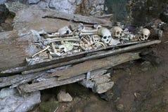 Skulls & bones in a burial cave/grave Tana  Toraja Stock Photography