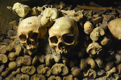 Skulls & Bones in Catacombs, Paris Royalty Free Stock Images