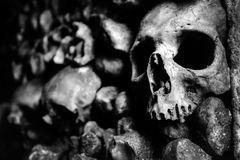 The skulls and bones in the Catacombs of Paris. France Stock Images