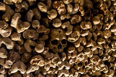 Skulls and bones from charnel house. Skulls and bones from the charnel house royalty free stock photo