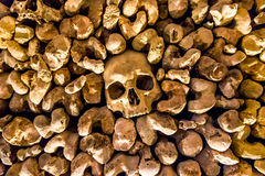 Skulls and bones from charnel house. Skulls and bones from the charnel house stock image