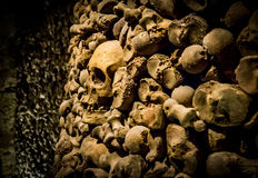 Skulls and bones from charnel house. Skulls and bones from the charnel house stock images