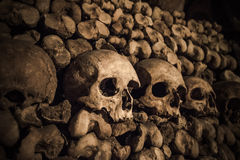 Skulls and bones in Paris Catacombs. France Royalty Free Stock Photo
