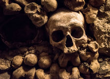 Skulls and bones in Paris Catacombs Royalty Free Stock Photography