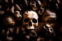 Skulls and bones in Paris Catacombs. France Stock Photos