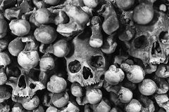Skulls and bones. In mass gave. Black and white photography Stock Photos