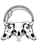 Skulls bulls and lasso Stock Image