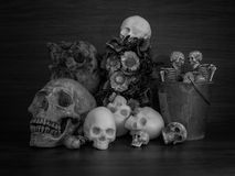 Skulls and bunch of flowers. A black and white photo of skulls with a bunch of flowers and a basket Royalty Free Stock Photography