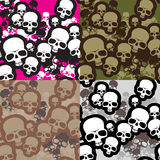Skulls camo Stock Photography