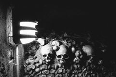 Skulls in the Catacombs of Paris Stock Images