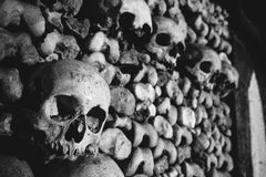Skulls in the Catacombs of Paris Stock Photography