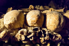 Skulls in the Catacombs of Paris. France Royalty Free Stock Image