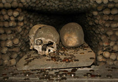 Skulls and coins in ossuary. Skulls and coins in church ossuary in czech republic Stock Image