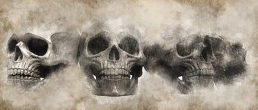 Skulls drawn on parchment - scroll royalty free illustration