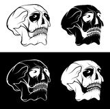 skulls with eyes vector design template Royalty Free Stock Images