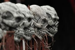 Skulls on a fence Stock Images