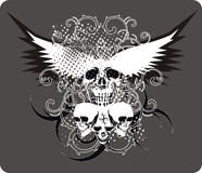 Skulls_grey. T-shirt or poster design illustration with skulls, tribals and wings Royalty Free Stock Image