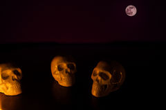 Skulls, halloween background Stock Photo
