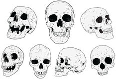 Skulls - Hand Drawn Royalty Free Stock Photo