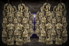 Skulls hanging. Stock Photo