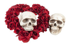 Skulls with Heart of Roses Stock Images