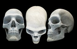 Skulls Isolated on Black Royalty Free Stock Images