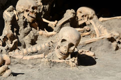 Skulls of long time ago dead men in the ruins of Ercolano Italy. Photo Stock Photo