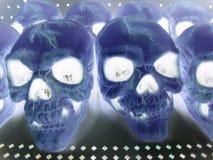 Skulls, negative. Scary Halloween Skulls stock photo