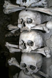 Skulls in the ossuary. On the dark background Royalty Free Stock Images