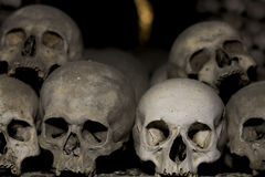 Skulls. Real human skulls in bone chapel Stock Photos