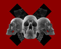 Skulls on red composition. Stock Photography