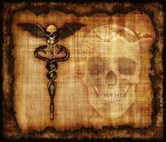 Skulls, Sankes and Bat Parchment Royalty Free Stock Photo