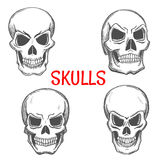 Skulls and skeleton craniums sketch icons Stock Images