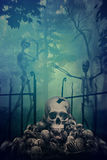 Skulls and Skeletons in graveyard Royalty Free Stock Photography