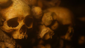 Skulls. In the tunnels of Paris Royalty Free Stock Photos