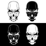 skulls vector design template Stock Images