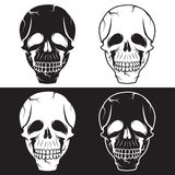 Skulls vector design template Royalty Free Stock Image